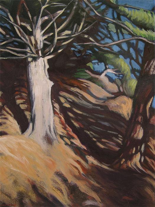 Peinture de tronc d'arbre blanc sur un sentier ombragé