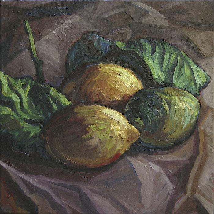 citrons verts et jaunes sur drapé gris sombre