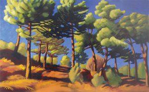 paysage d'une forêt de pins dans les cévennes