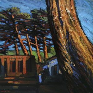 tronc et pins en bord de mer plage des Chevrets