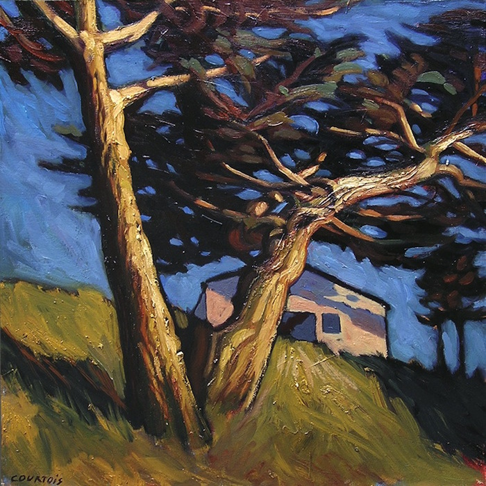 pins dans le vent plage des Chevrets