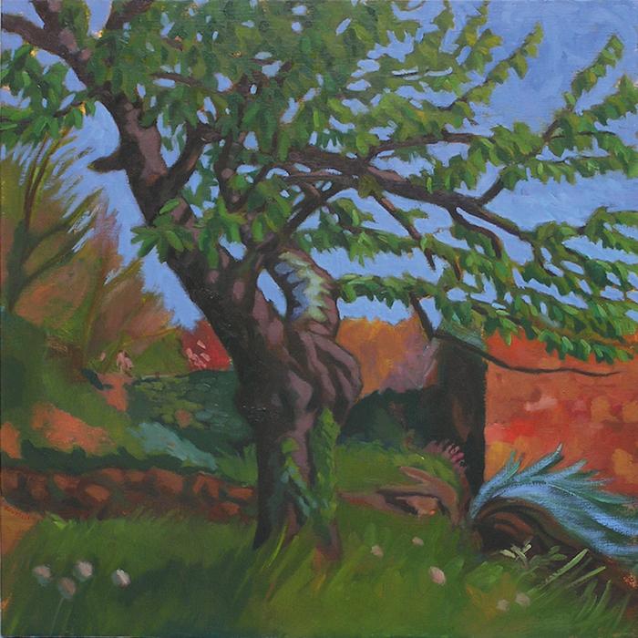 cerisier dans un jardin coloré