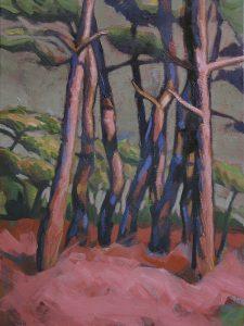 prairie avec pins roses à Erquy