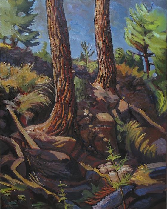 peinture troncs de pins en sous-bois